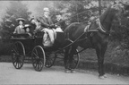 Carriage; Ayliffe's horse and trap; c1905; date tbc (J0811151E13)